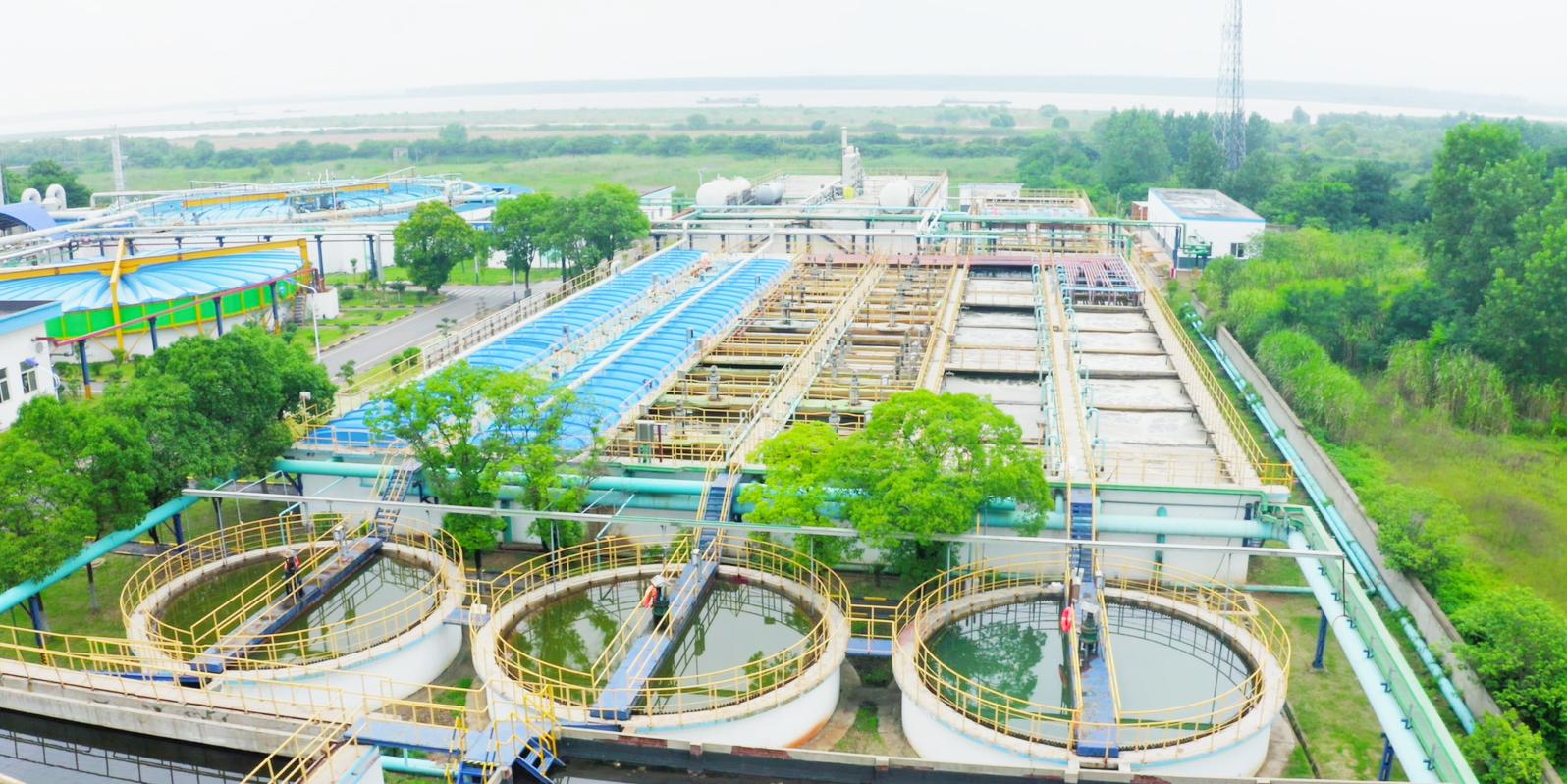青岛双桃化工与蓝必盛合作染料废水处理案例