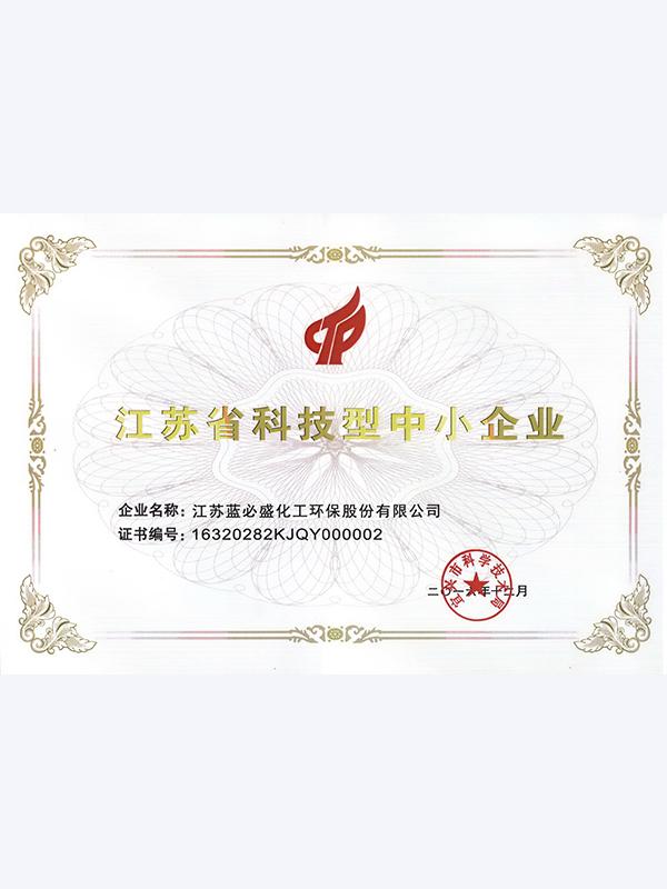 蓝必盛-质量管理体系认证证书(中文)